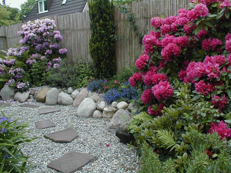 Japanische Gärten bodhi baum japanische gärten zengärten feng shui